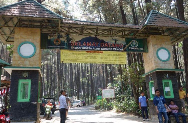 Fasilitas Serta Misteri Hutan Pinus, Penginapan Dan Tiket Masuk Gunung Pancar 2019