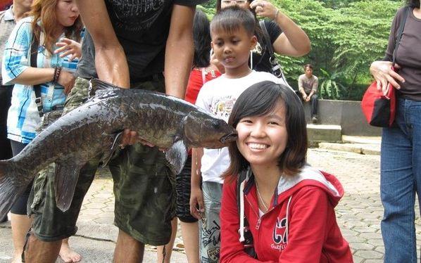 Selfie Bersama Ikan Dewa Cibulan