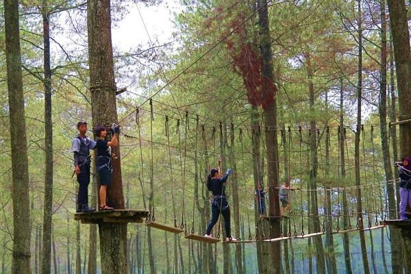 Treetop Adventure Park Lembang