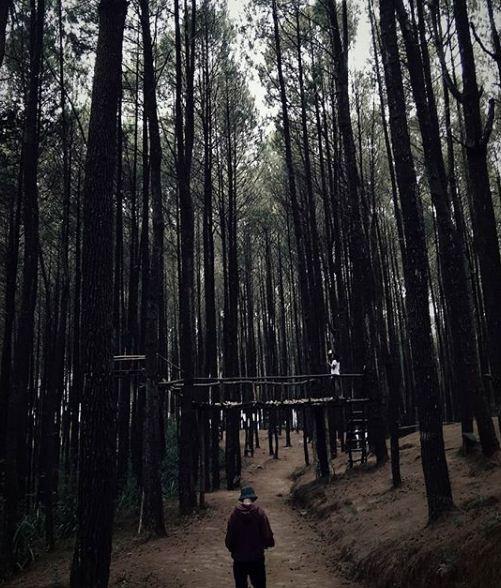 Inilah 10 Objek Wisata Terbaik Di Yogyakarta Yang Wajib Kalian Coba